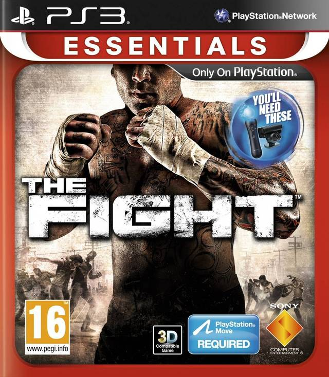 The Fight (Схватка) (для PS Move)